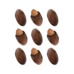 Chocolate-coated almond