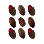 Čokoladne dražeje brusnica